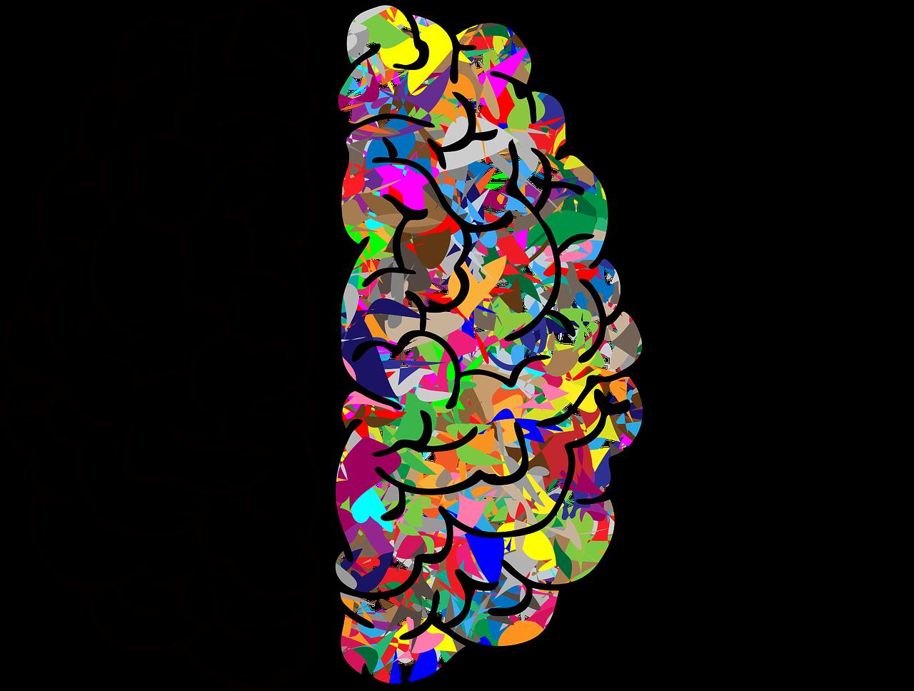 brain-2750415_1280
