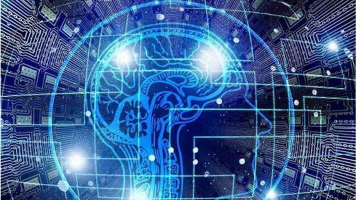 Cerebro neurociencia
